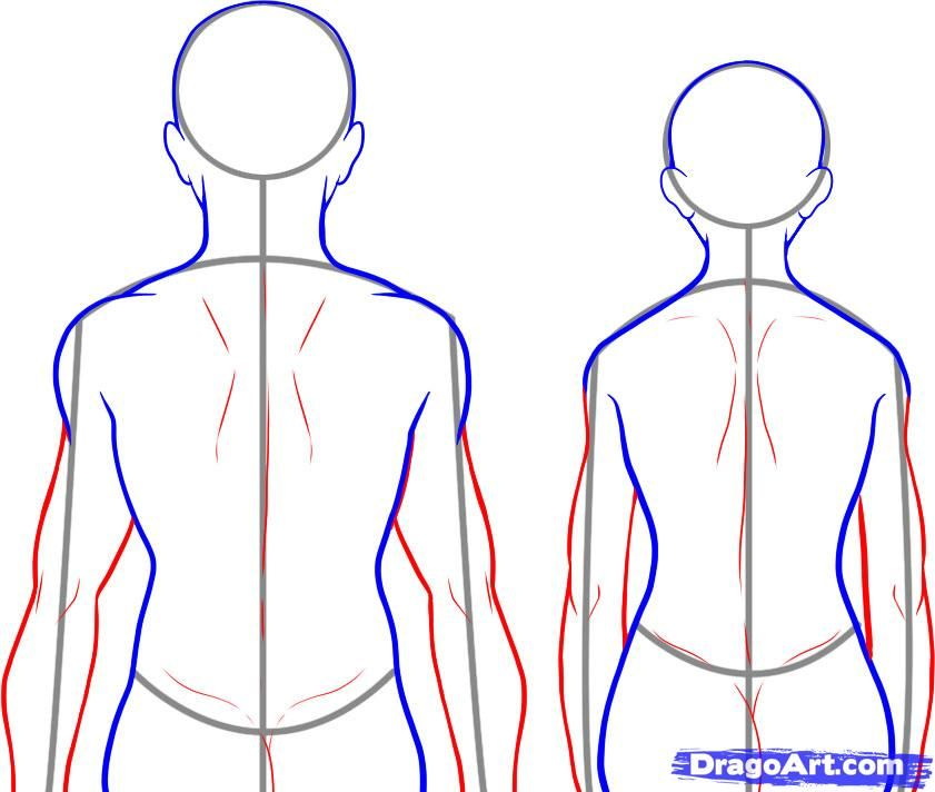 How To Draw A Back Step By Step Anatomy People Free Online Drawing Tutorial Added By Dawn October 27 201 Guided Drawing Human Body Drawing Nature Sketch