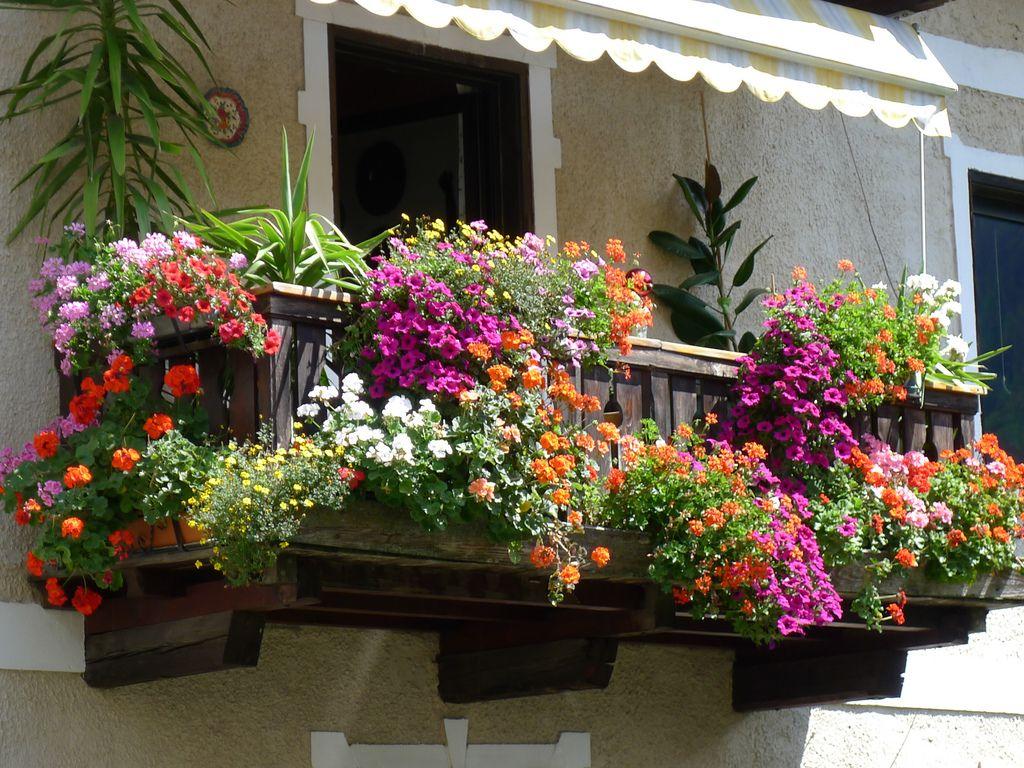 balconi fioriti primavera