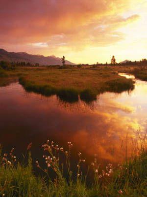 Wyoming- Jackson Hole