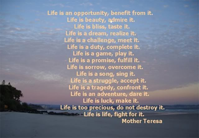 Life Quotes Mother Teresa Impressive Mother Theresa  Quotes I Like  Pinterest  Life Free Images And