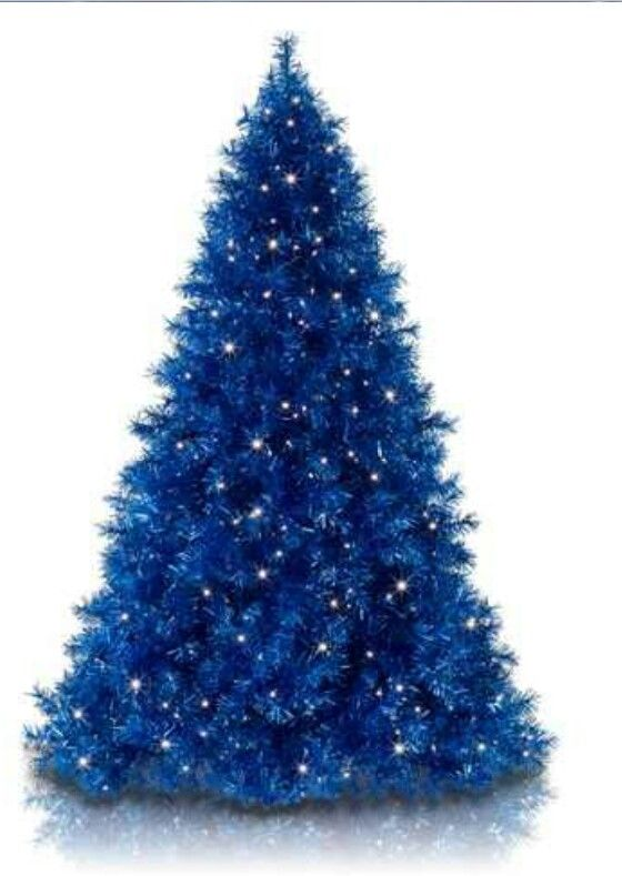 Royal Blue Christmas Tree Saw One Decorated In White And Silver Beautiful Blue Christmas Tree Blue Christmas Tree Decorations Silver Christmas Tree