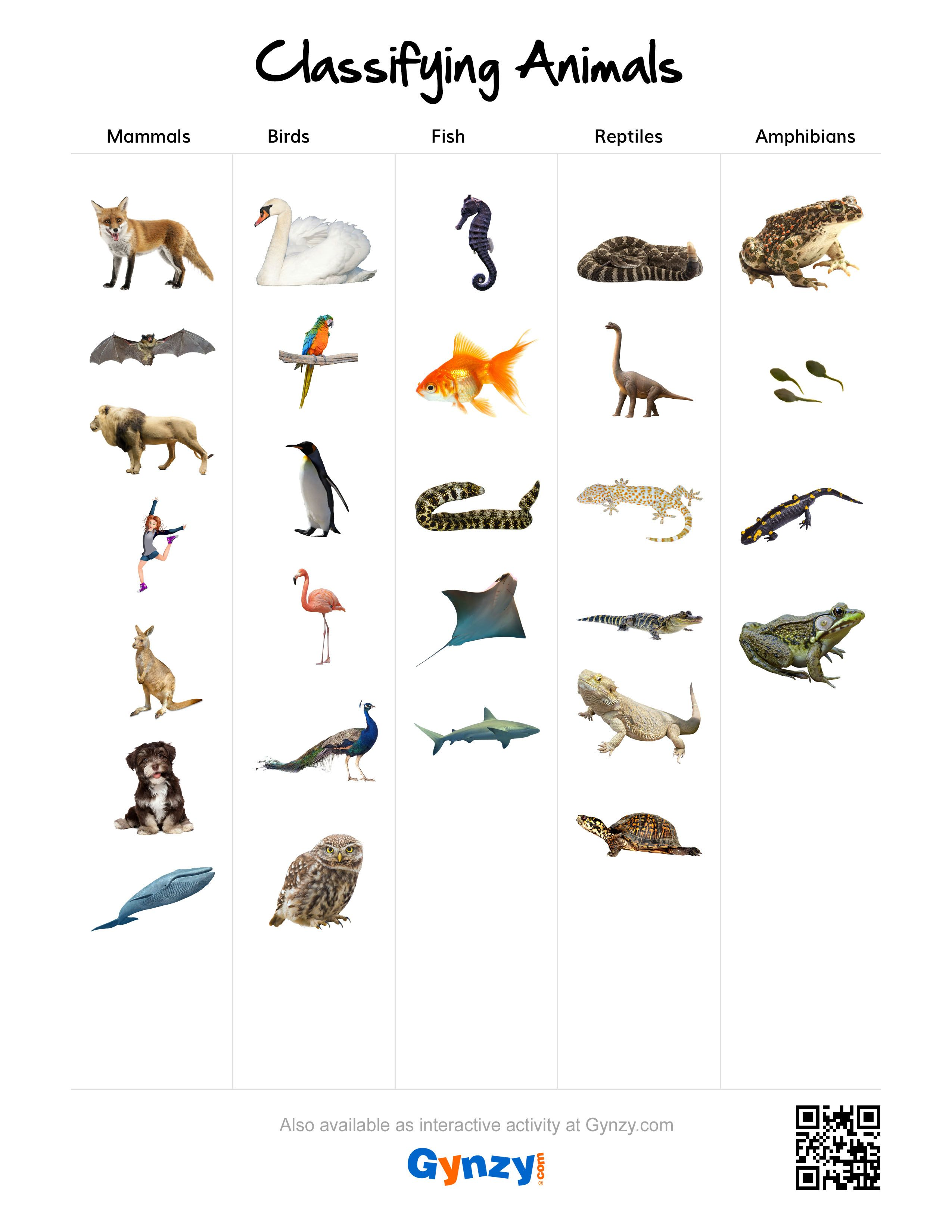 Mammals, Birds, Fish, Reptiles or Amphibians. [https://r ...