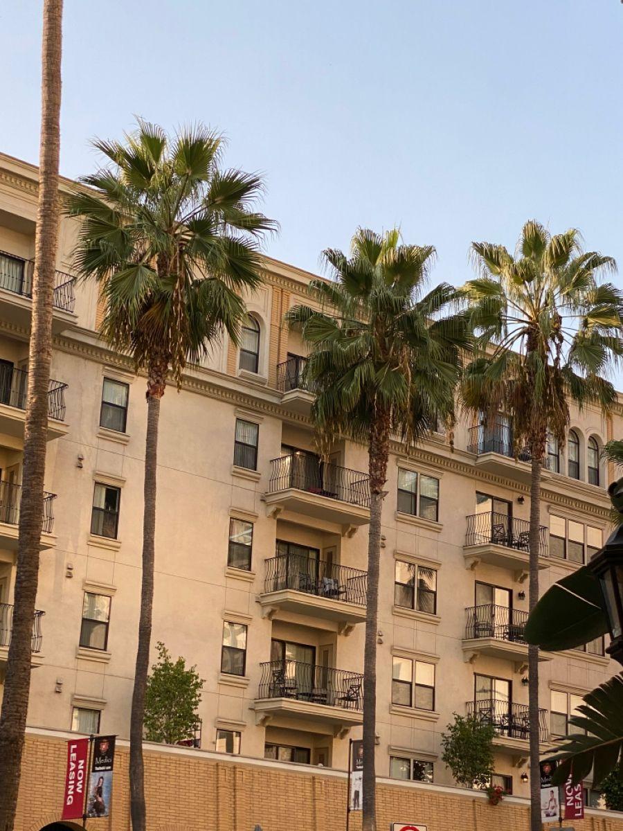 Dtla Apartments Los Angeles Apartment Complex Los Angeles Apartments Downtown Los Angeles