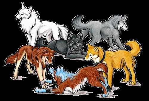 Волк в 2019 г. | Зверополис, Животные и Рисунки