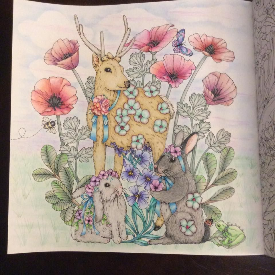 Rhapsody In The Forest Coloring Book