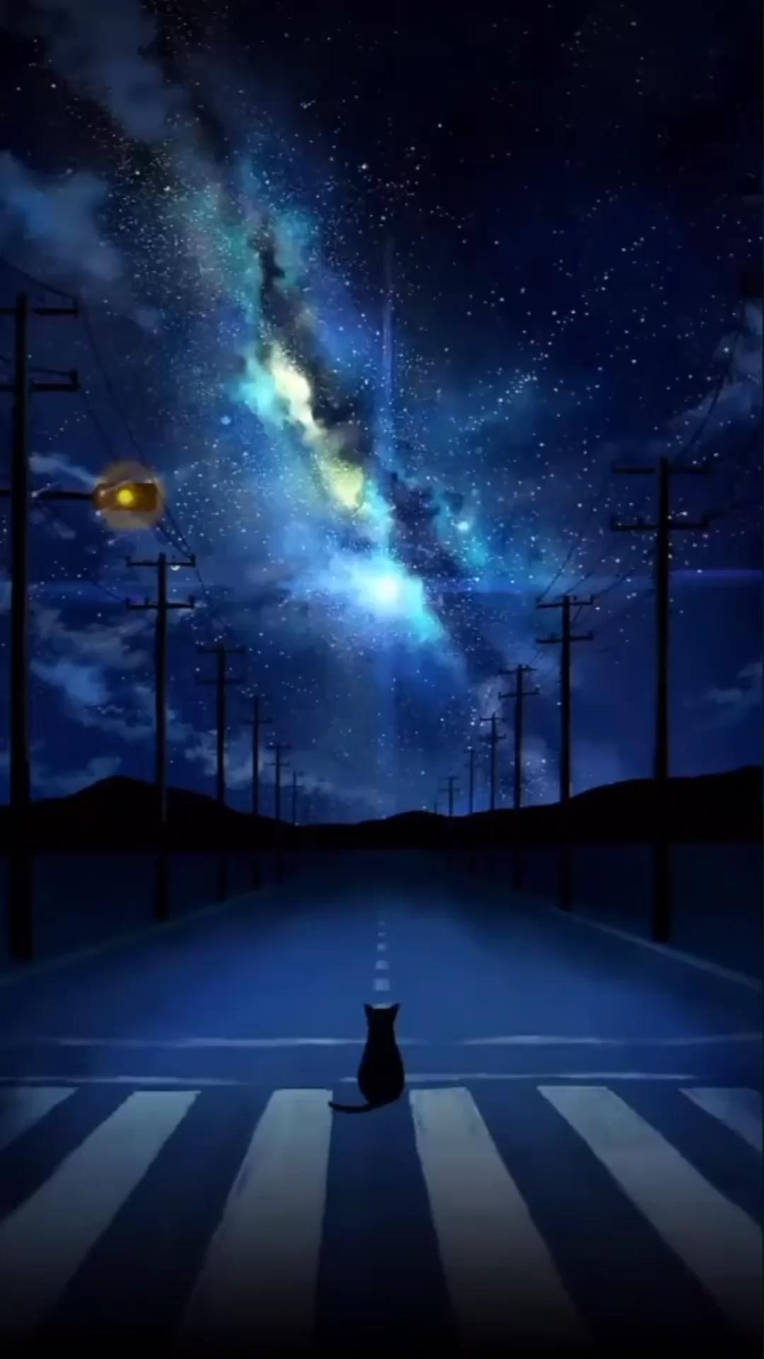 Hình nền động bầu trời đêm tuyệt đẹp