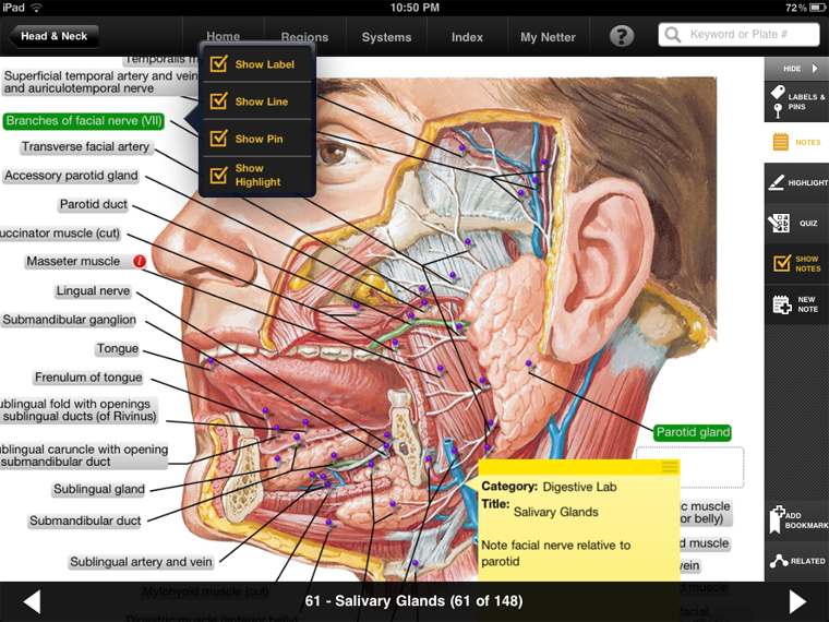 Image Detail For Netters Anatomy Atlas For Ipad Anatomy
