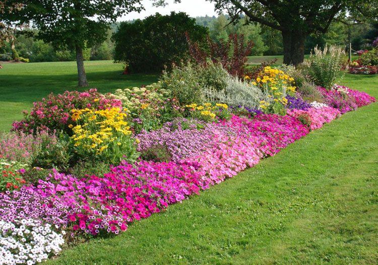 35 Best Flower Bed Ideas Beautiful Flower Garden Designs 2020 Guide Flower Garden Design Garden Flower Beds Flowers Garden Layout
