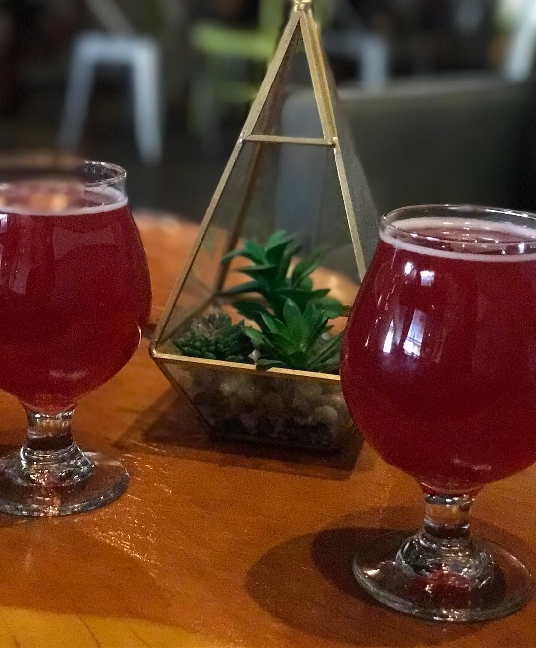 Stopped To Get A Beer After The Rick Mobile Dark Sky Brewing Has This Awesome Fruity Sour That Looks Like Fruit Punch Call Succulent Arrangements Fruity Frui