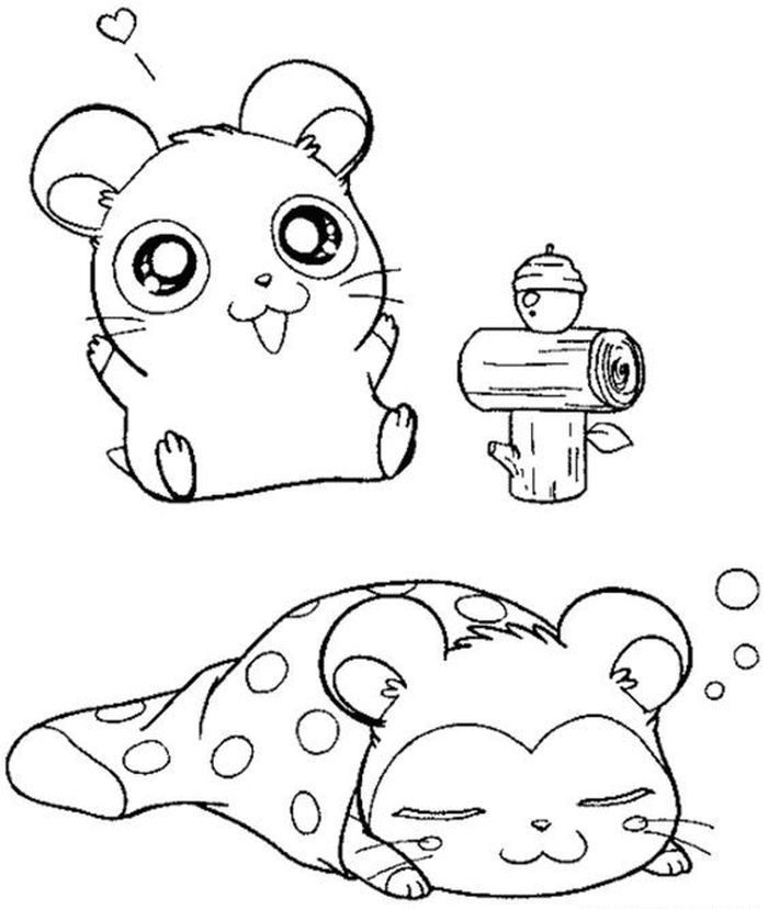 Coloring Hamster Printable Pages Cute Coloring Pages Animal Coloring Pages Coloring Pages