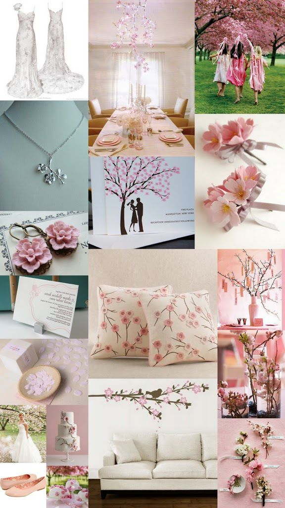 Color Day Themes Cheerful Cherry Blossoms The Sweetnest Cherry