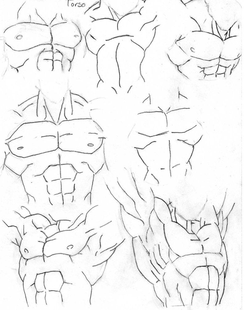 Muscle types dbz