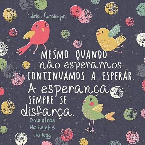Mesmo quando não esperamos continuamos a esperar. A esperança sempre se disfarça.