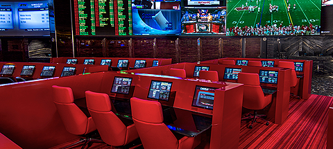 The Race and Sports Book Sports betting, Nfl