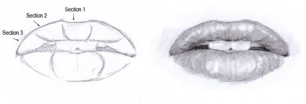Tips on Drawing the Mouth | Free step by step art tutorial ...