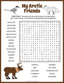 Making Food Puzzles For Dogs