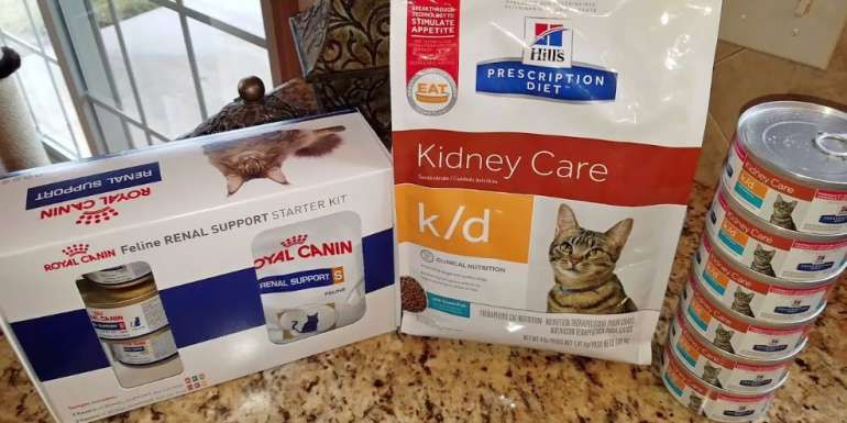 crf diet for cats