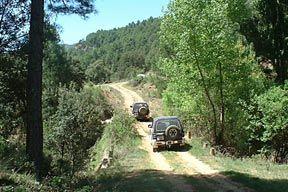 Descubre nuestros campos andaluces | Loila
