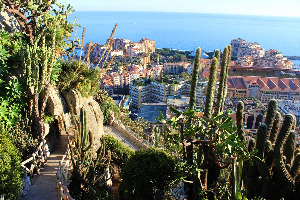 Lamaran Romantis Di Jardin Exotique De Monaco Monaco Trip