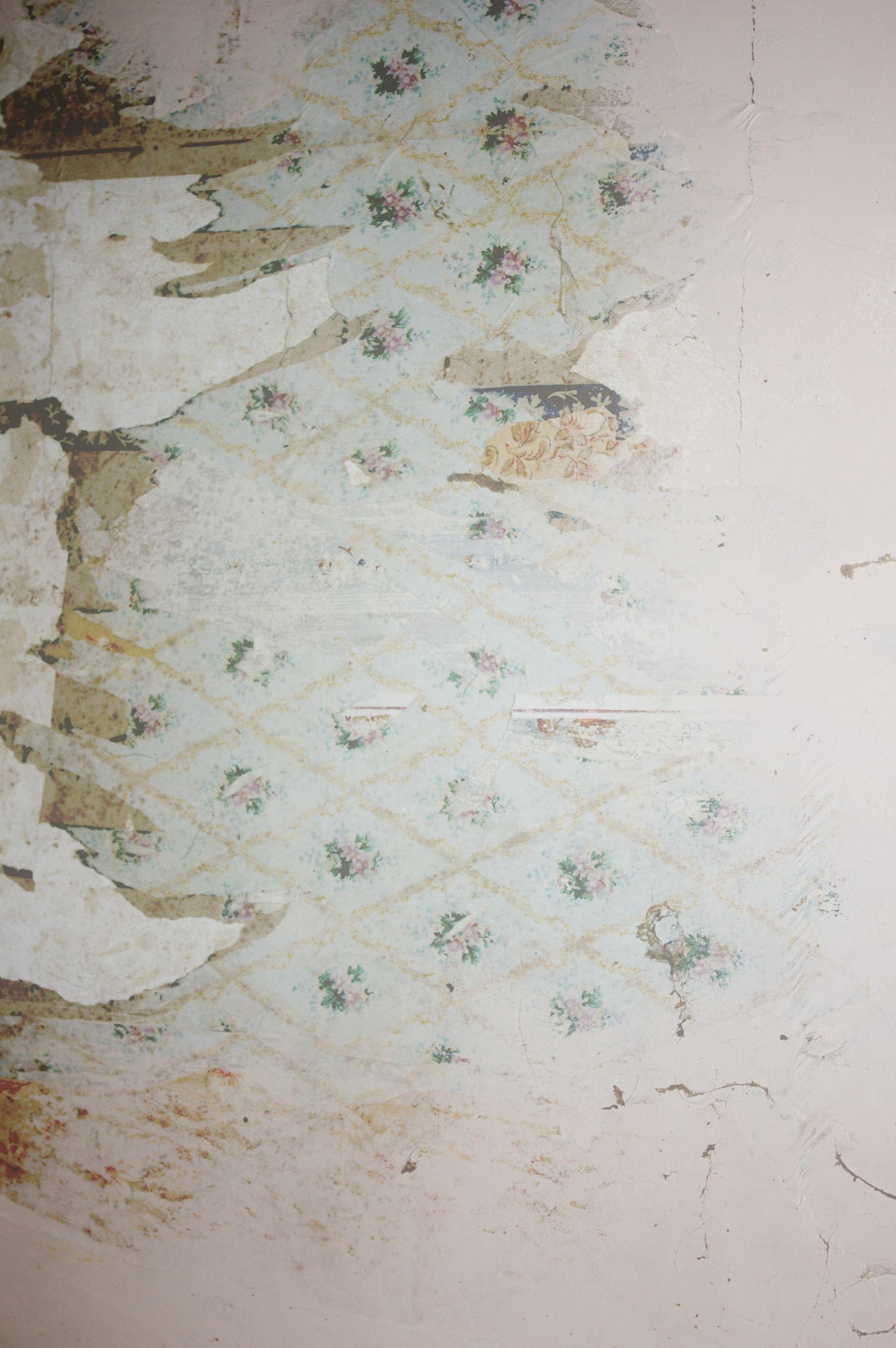 Peeling Wallpaper Painterly Texture Grunge Textures Wallpaper