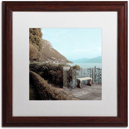 Trademark Fine Art Lake Vista IV Canvas Art by Alan Blaustein, White Matte, Wood Frame, Multicolor