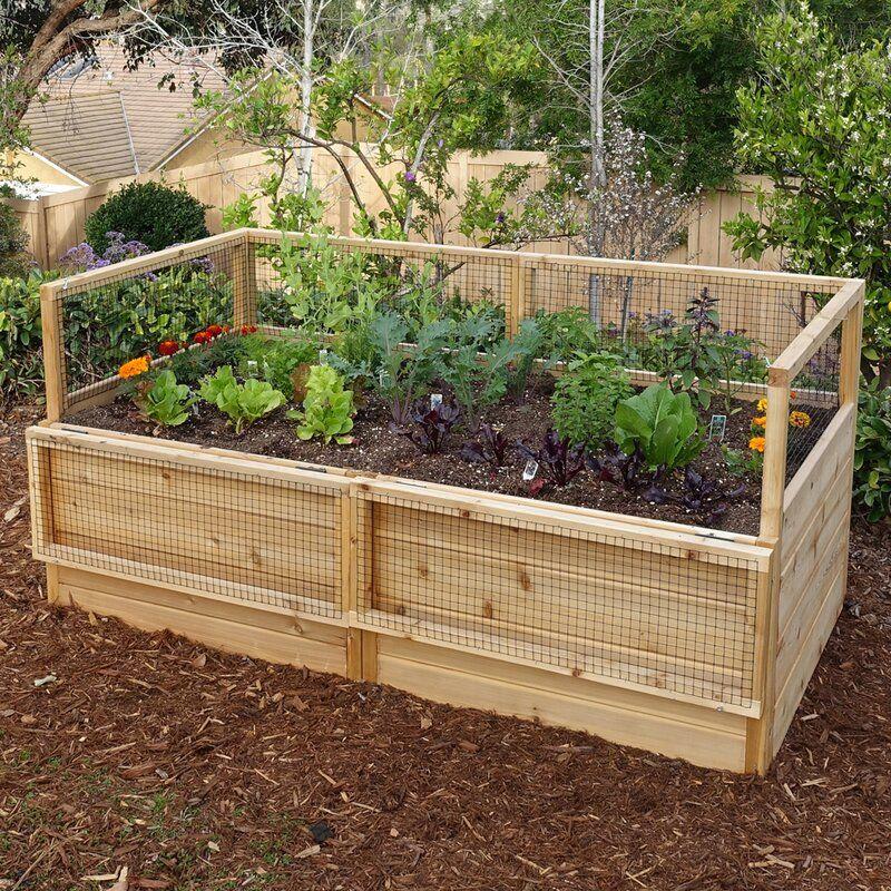 6 ft x 3 ft Cedar Raised Garden Bed in 2020 Cedar raised