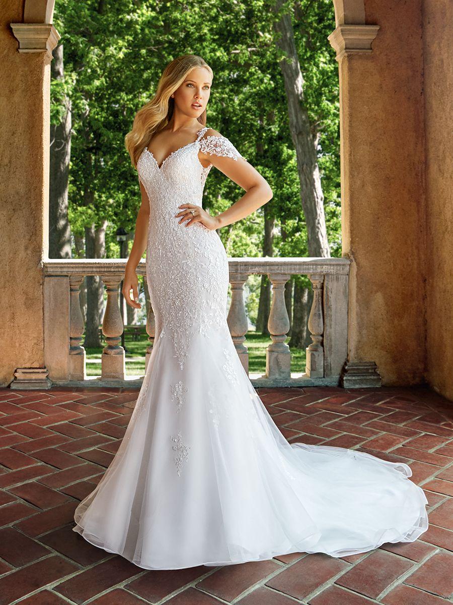 Simple wedding dresses cheap  Moonlight  Bridal Collection  LuxeList  Moonlight  Pinterest