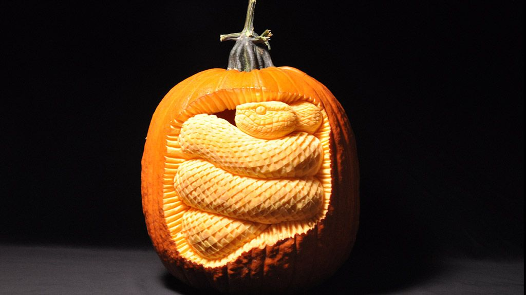 """""""For this one, I visualized a snake stowed away inside a pumpkin."""" - Scott Cummins"""