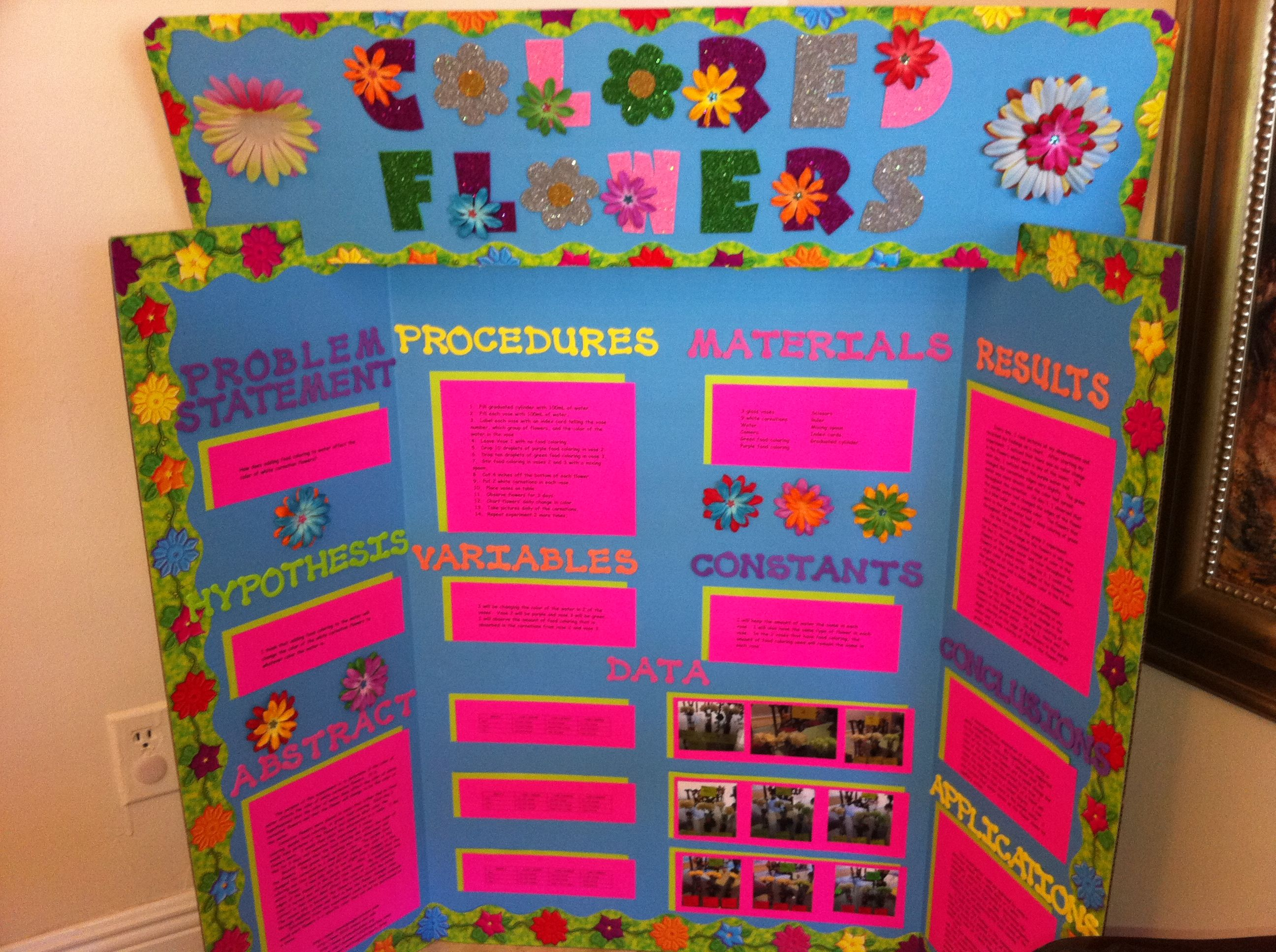 Science Fair 2010  Colored Flowers | Kids School Projects