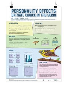 Image Result For Design Excellence Research Poster  Research