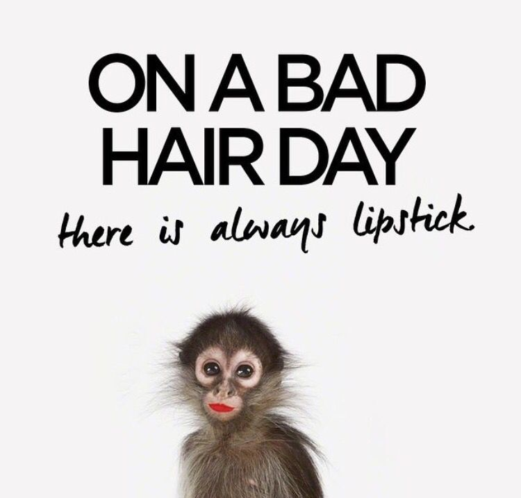 Emoticon Bad Hair Day: Kappers Citaten, Haar Citaten, Grappige Teksten