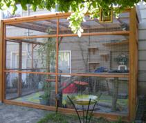 Cat Enclosure Services, Seattle - Catio Spaces: Photos
