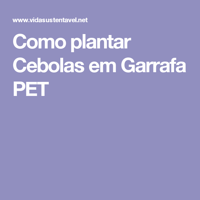 Como plantar Cebolas em Garrafa PET