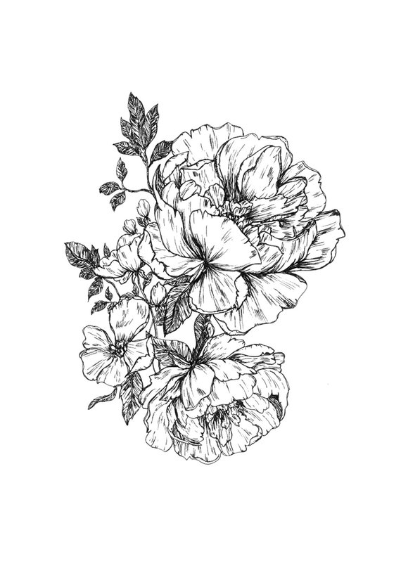 f73f0695f Peonies Hand Drawn Printable Digital Download File in 2019 ...