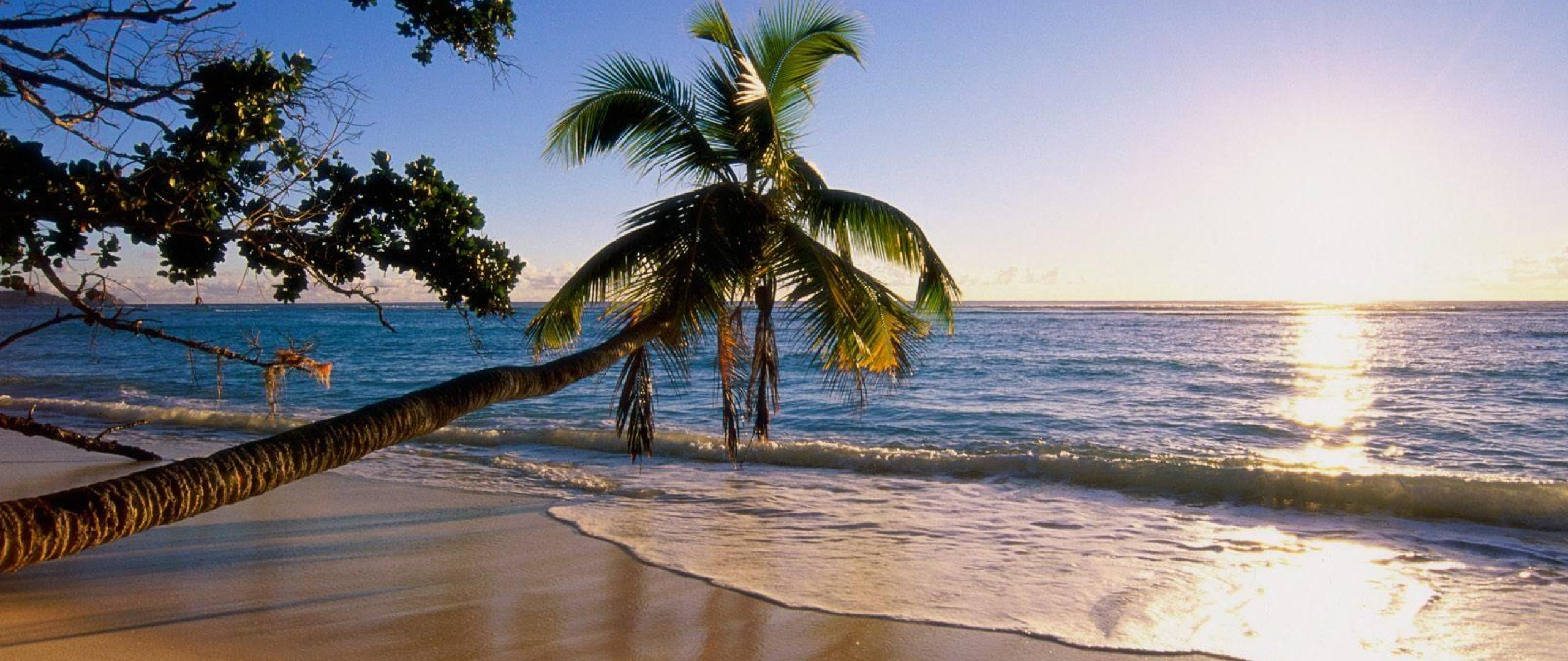 Paradise on earth wallpaper earth paradise on earth beach hd wallpapers desktop backgrounds - Paradise pictures backgrounds ...