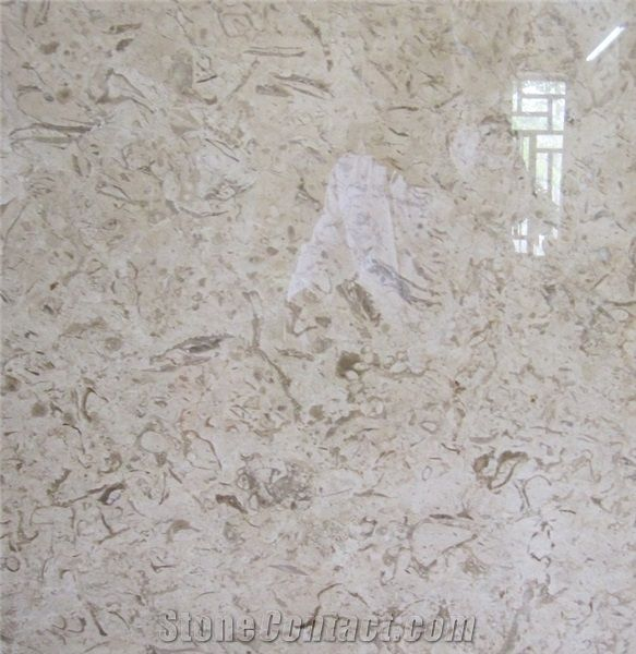 Fossil Beige Marble Slabs Amp Tiles Iran Fossil Beige