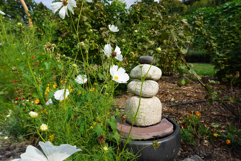 Cairns Japon Jardin Alsace Vosges Parc De Wesserling Parc