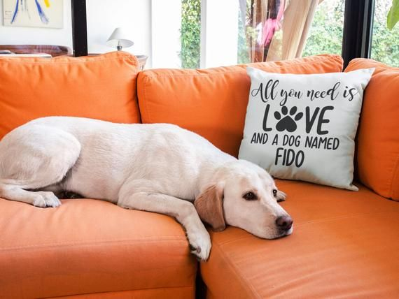 All You Need Is Love Dog Pillow Personalized Dog Pillow Dog