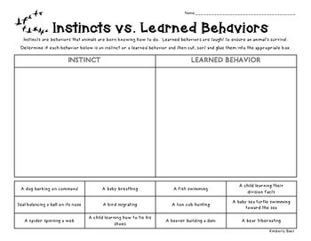 instincts vs learned behaviors sorting worksheet 4 little baers teachers pay teachers. Black Bedroom Furniture Sets. Home Design Ideas