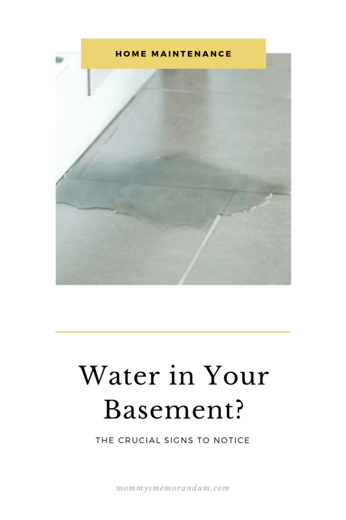 There Are Various Reasons For Basement Leaks Which Varies Between Lateral And Hydrostatic Pressure Here Ar With Images Leaking Basement Home Maintenance Flooded Basement