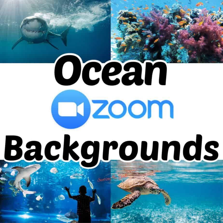 Huge List Of Zoom Backgrounds For Kids Background Kids Kids Art Projects