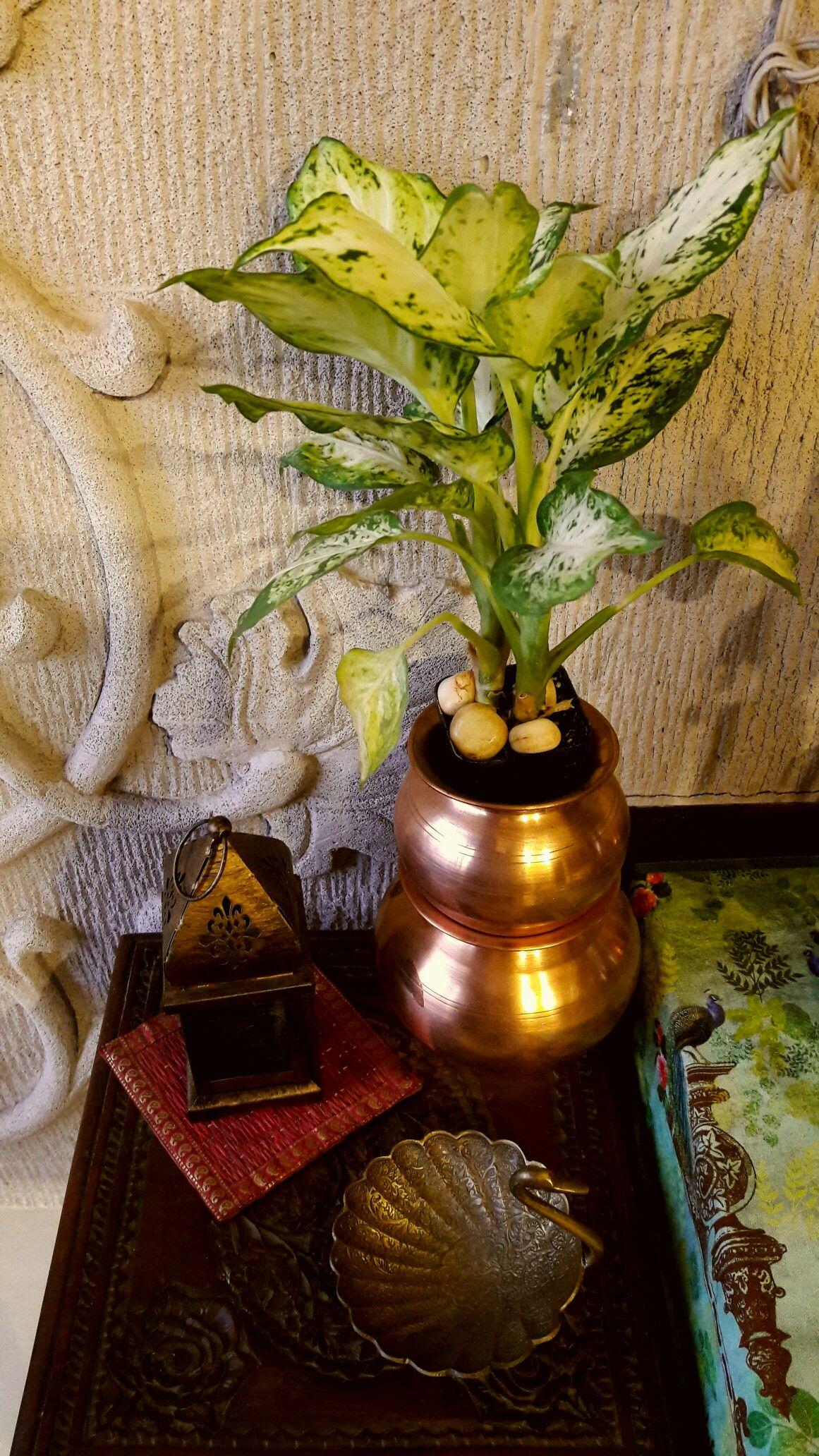 Pin by Kavitha Nadar on kavinadar Indian Home decor