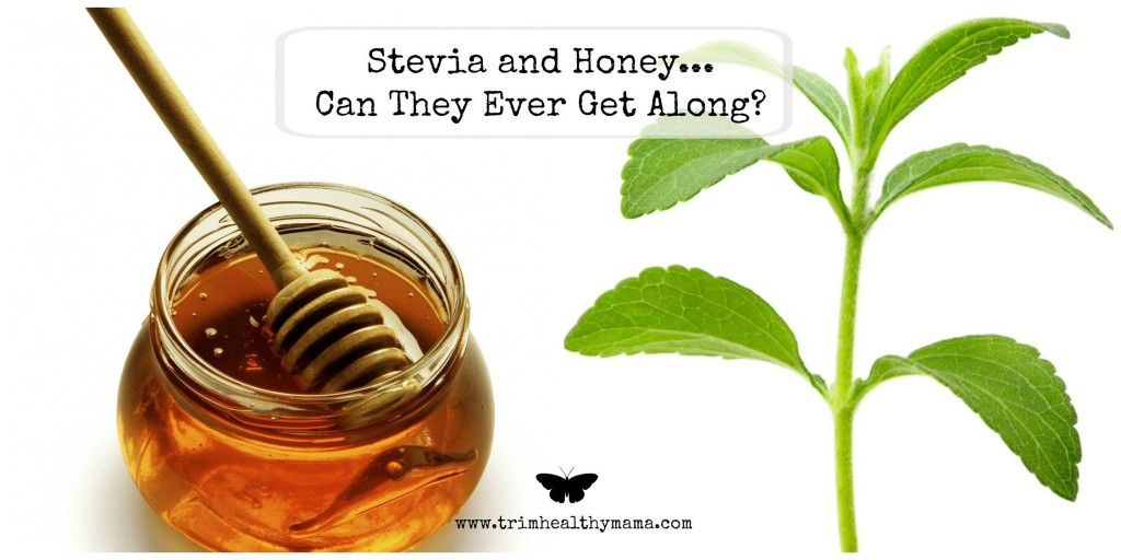 Stevia & Honey: Can they ever get along? Vol3EncouragementPIC1