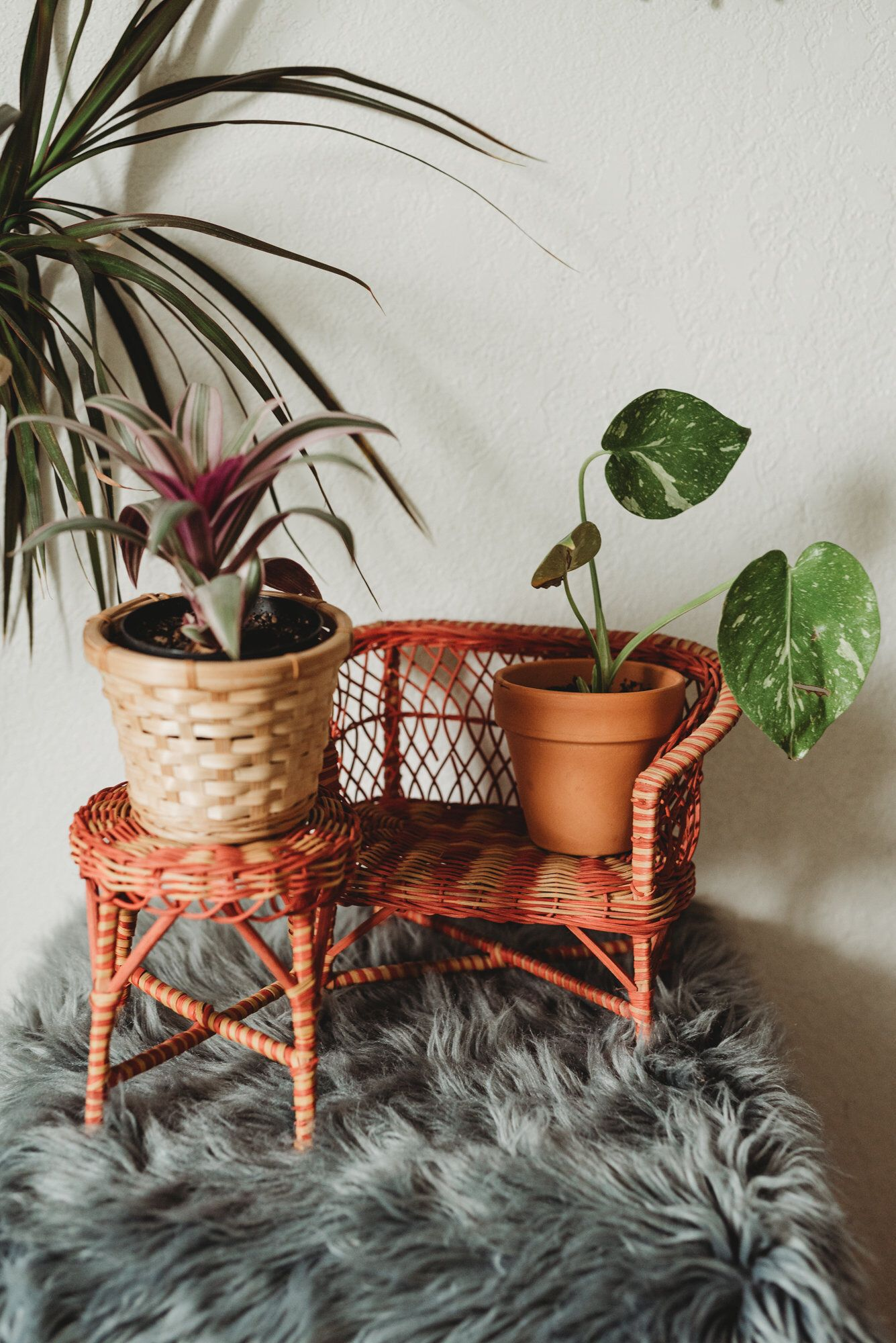 Vintage Mini Wicker Bench and Plant Stand Boho Home
