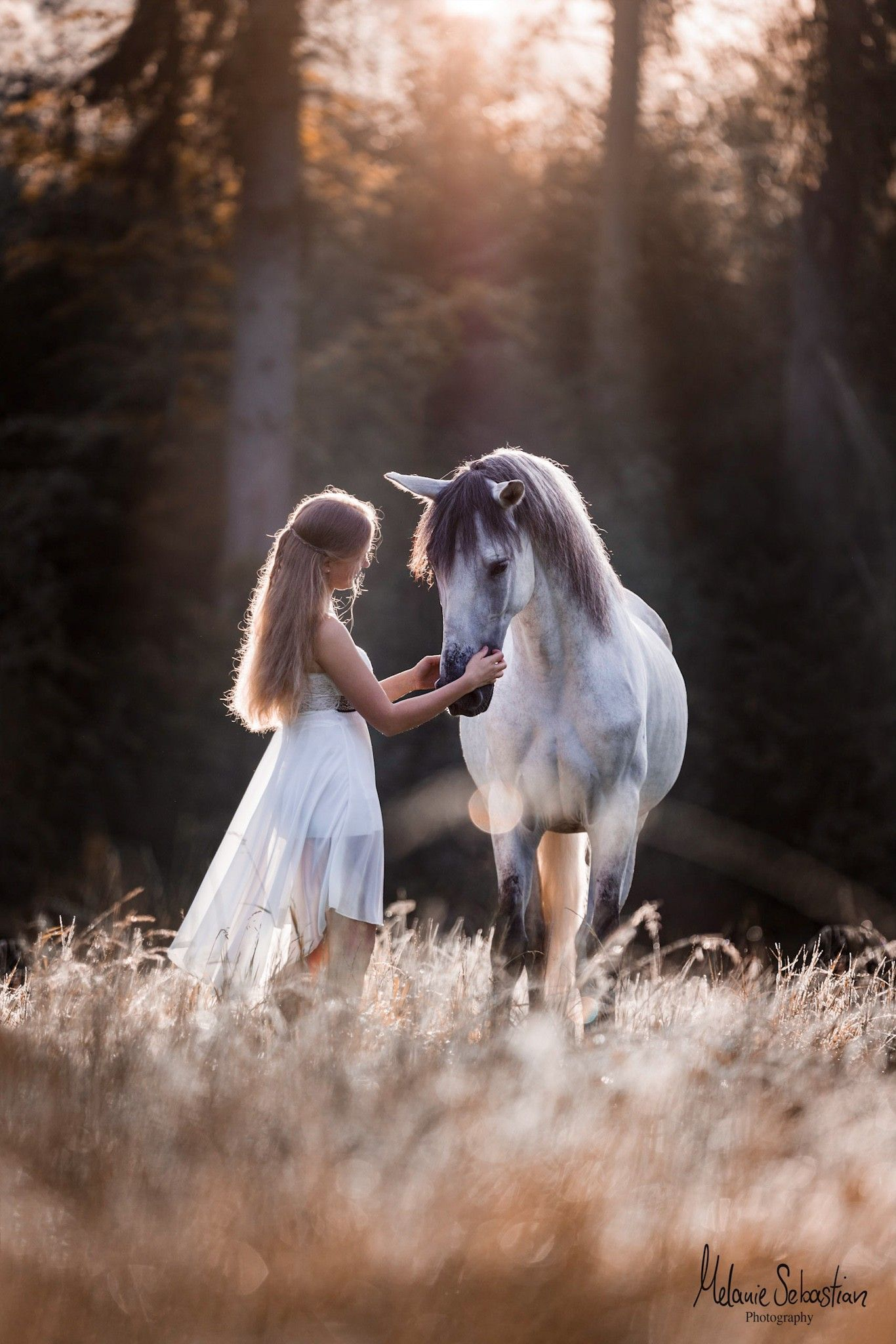 Horse-Human Portrait by Melanie Sebastian animal photography photography picture -  Andalusian in the sunrise. Shooting with a horse in Bavaria.  -