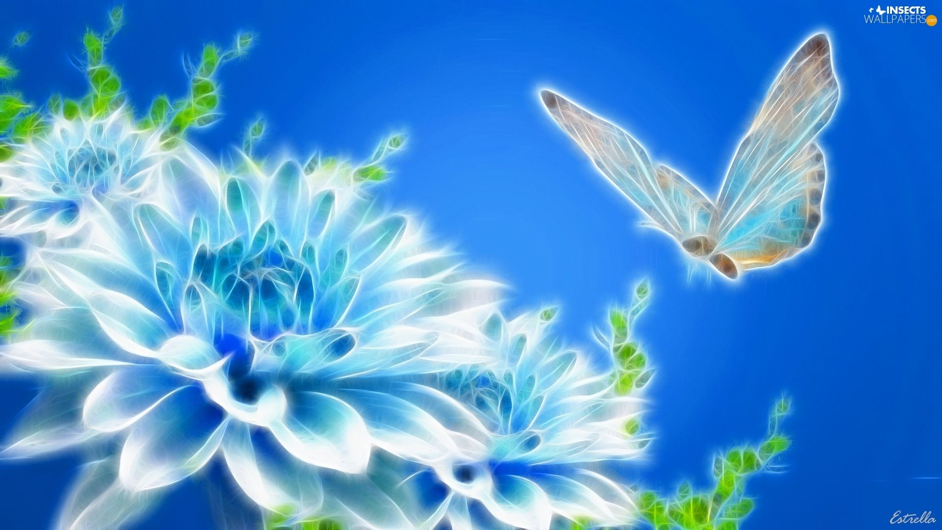 butterfly-3d-flowers-blue-colourfull-background.jpg (1920×1080)