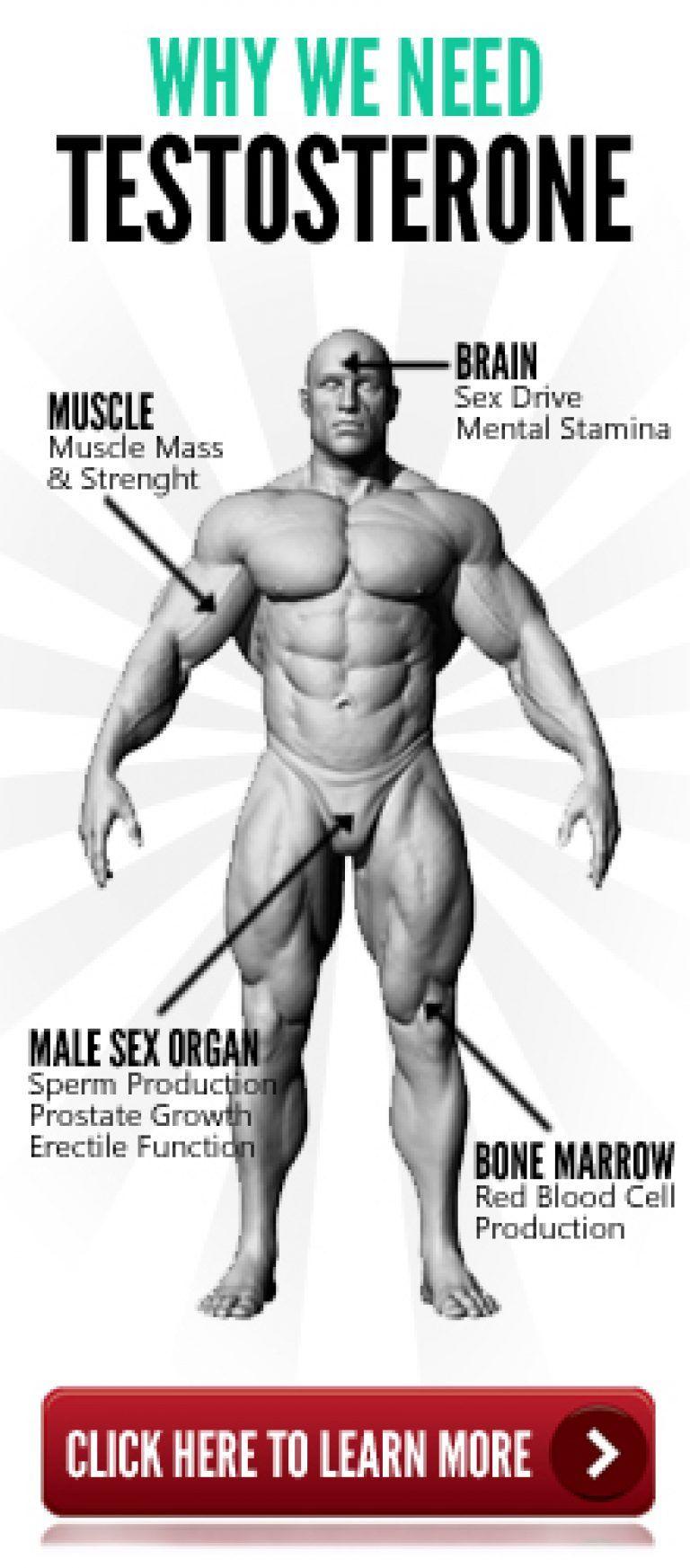 Masturbation frequency statistics