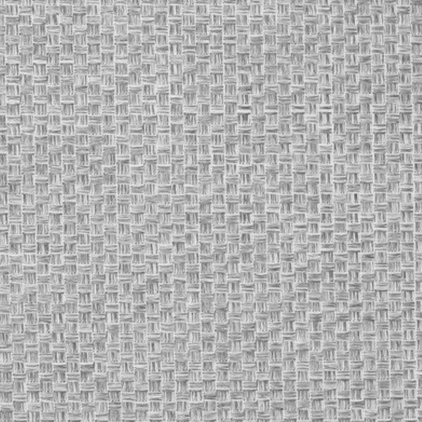 tetra 50, kratka jasnoszara