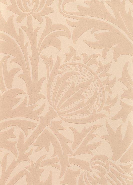 Thistledown Wallpaper A toning  beige wallpaper depicting thistle flowers
