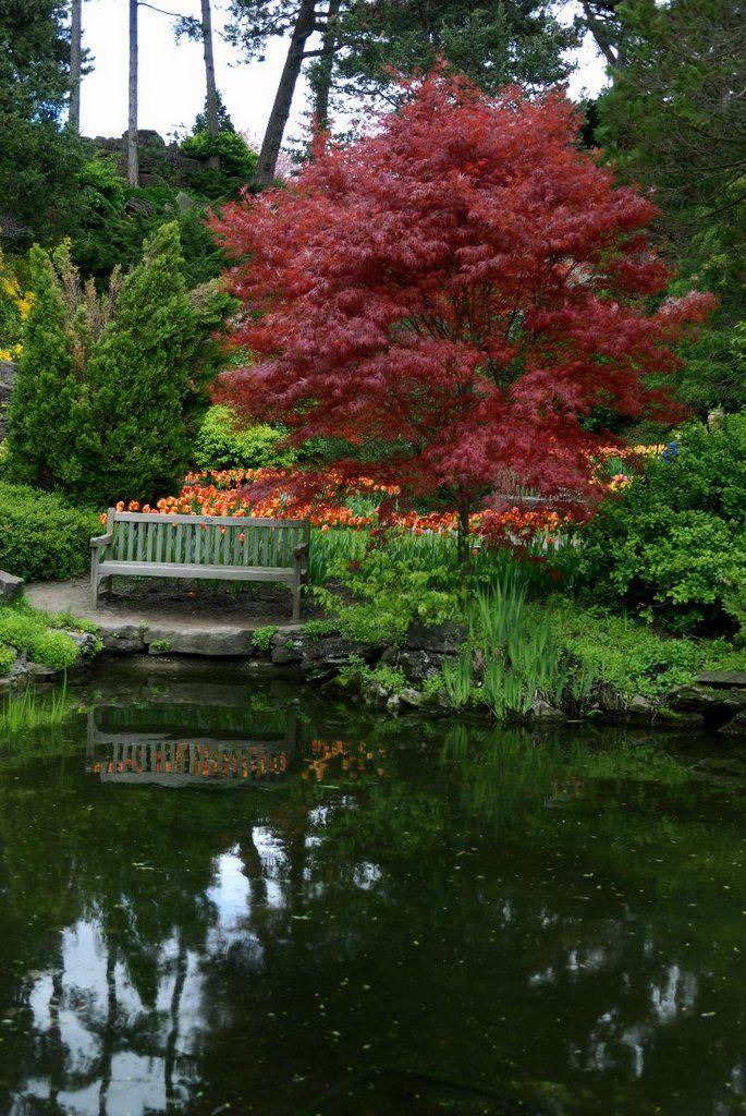 cf3e51825967e54240372e2ae474cb3f - Royal Botanical Gardens Hamilton Ontario Canada